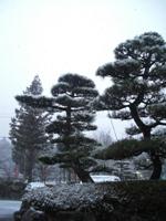 Japan2010 124 - Copy.JPG