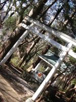 Japan2010 342 - Copy - Copy.JPG